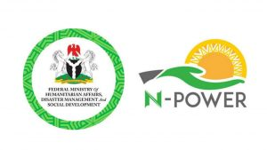 Frequently Asked Questions On The N-power Programme